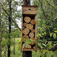 Our bee house just off the meadow in the Middle of Know-Where